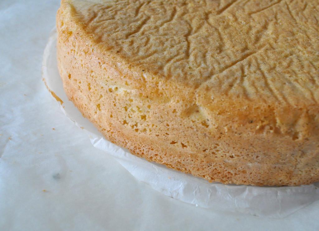 a-torta-korpus