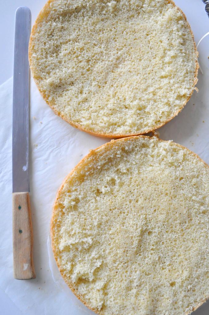 a-torta-korpusy-rozkr